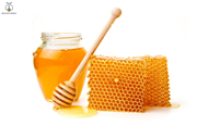 Obtain Natural Honey From Healthy Honey Now